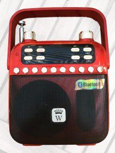 W293BT